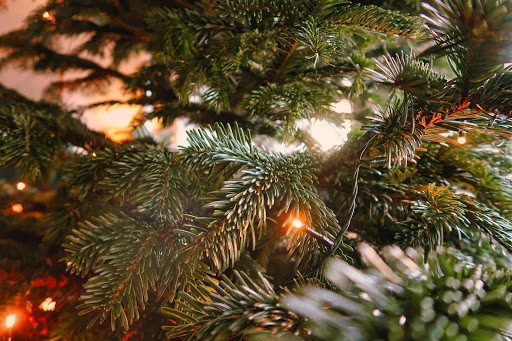 christmas tree office decoration