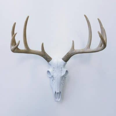 faux deer antler exotic wall decor