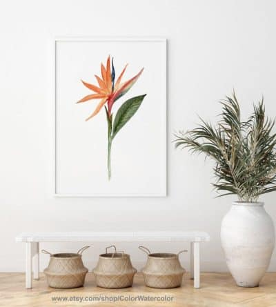 flower gift of the 9th anniversary: bird of paradise wall art