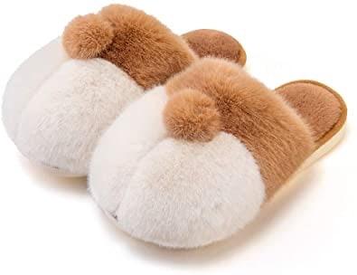Corgi Slippers for dog lovers