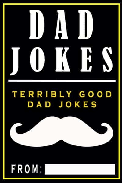 Dad Jokes: Terribly Good Dad Jokes Book
