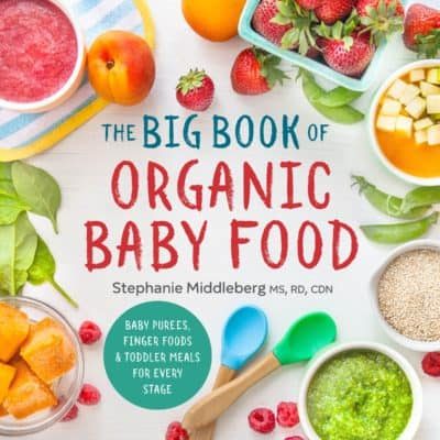 gift for first time moms: the big book of organic baby food