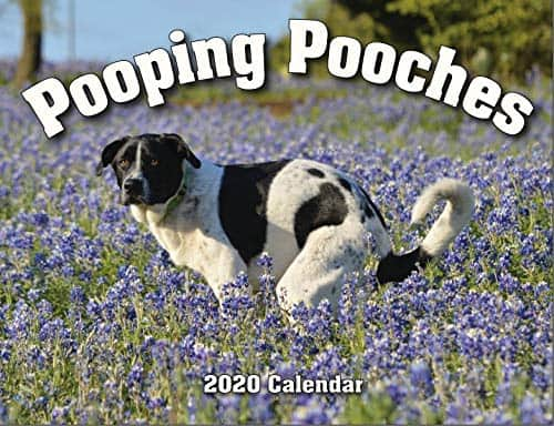 Pooping Pooches Wgag gift calendar -silly gift idea