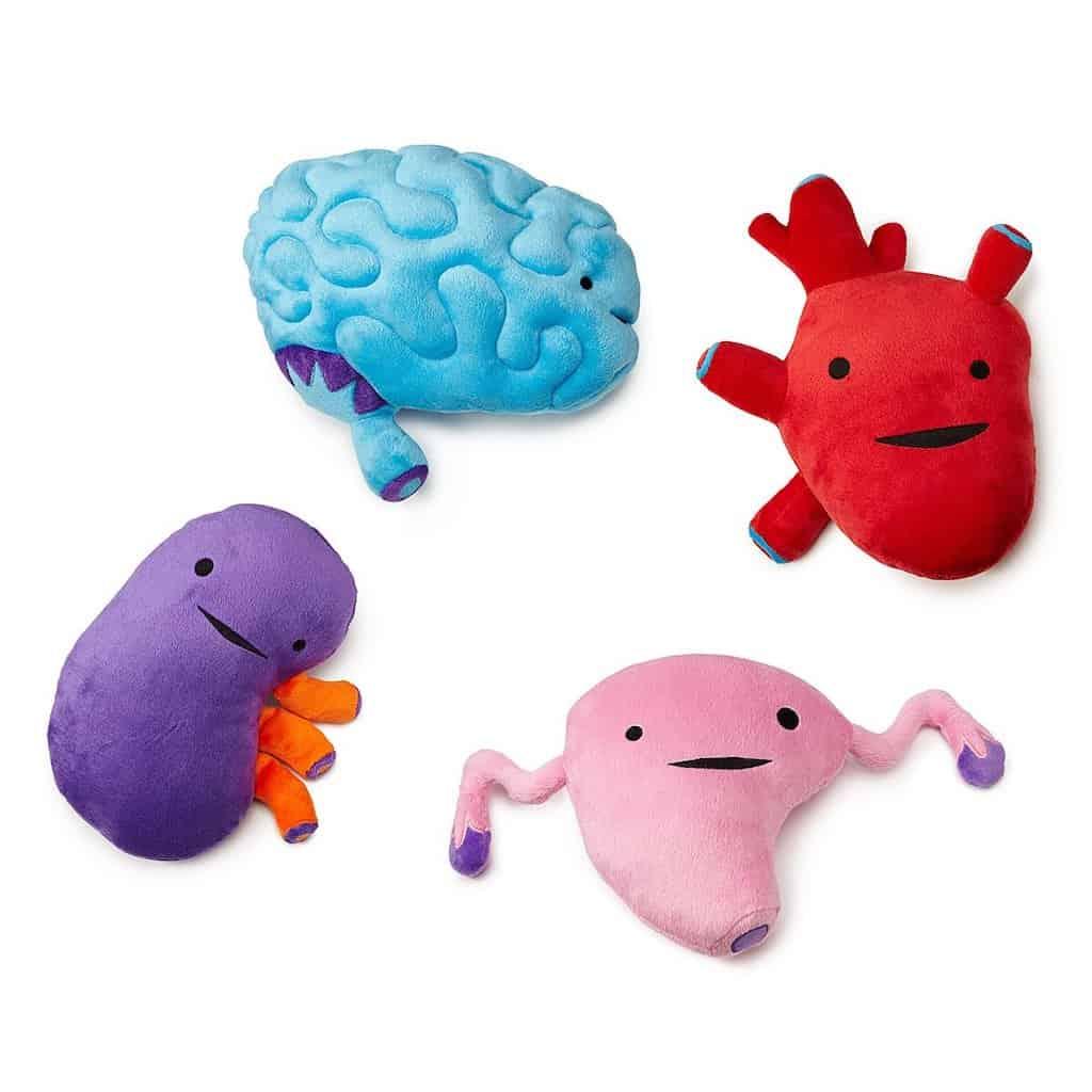 Plush Organs - Funny Plush Toys For Nurses