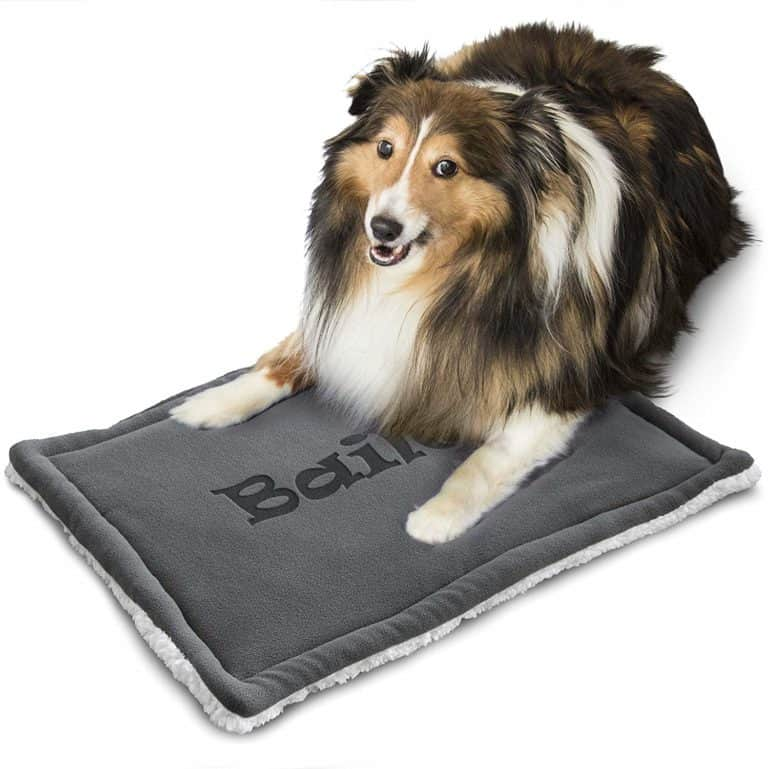 personalized dog gift: custom dog mat