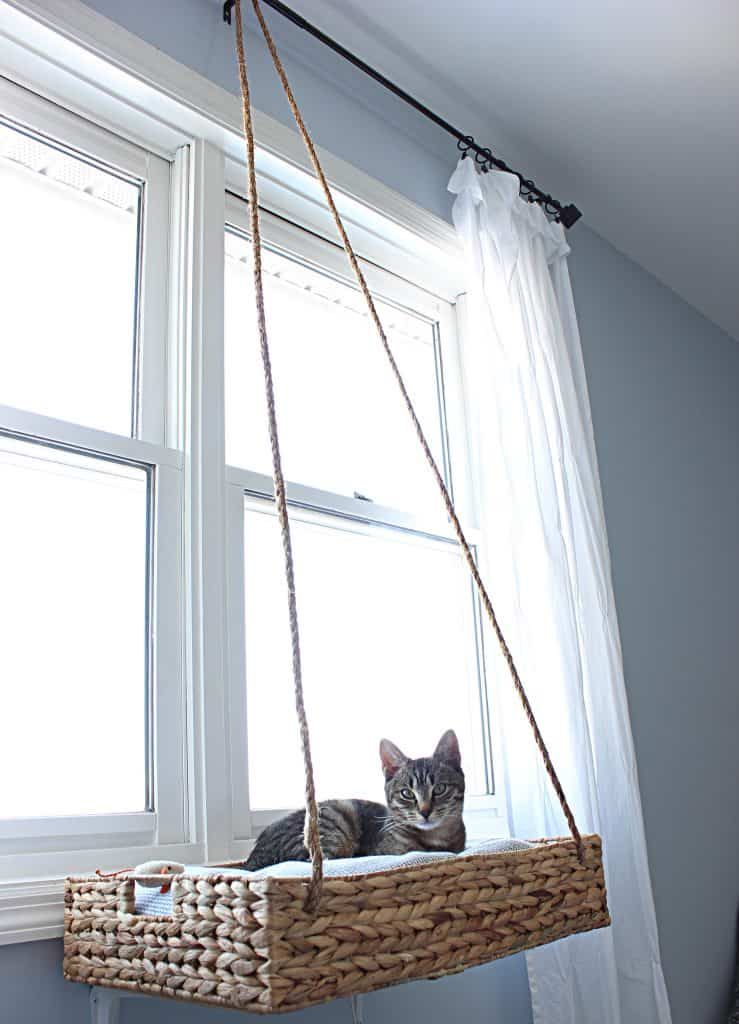 cat lovers catalog - diy cat perch