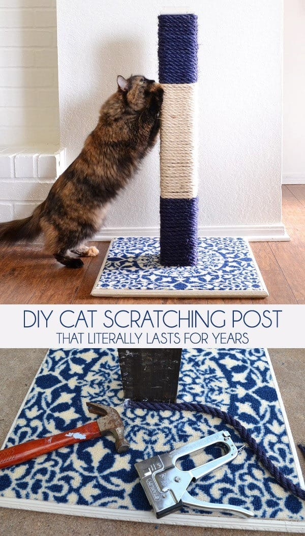 gifts for cat lovers - diy cat scratching