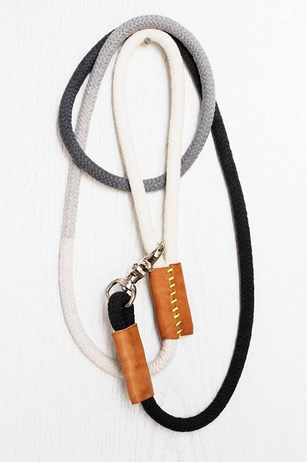 diy gift idea for dog lovers: ombre dog leash