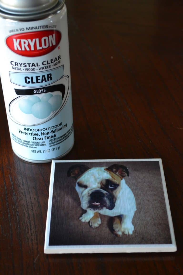 diy dog mom gift idea: diy dog coaster