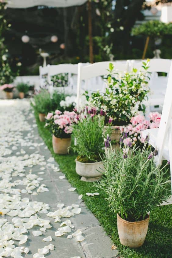 simple wedding aisle decorations ideas with potted plants