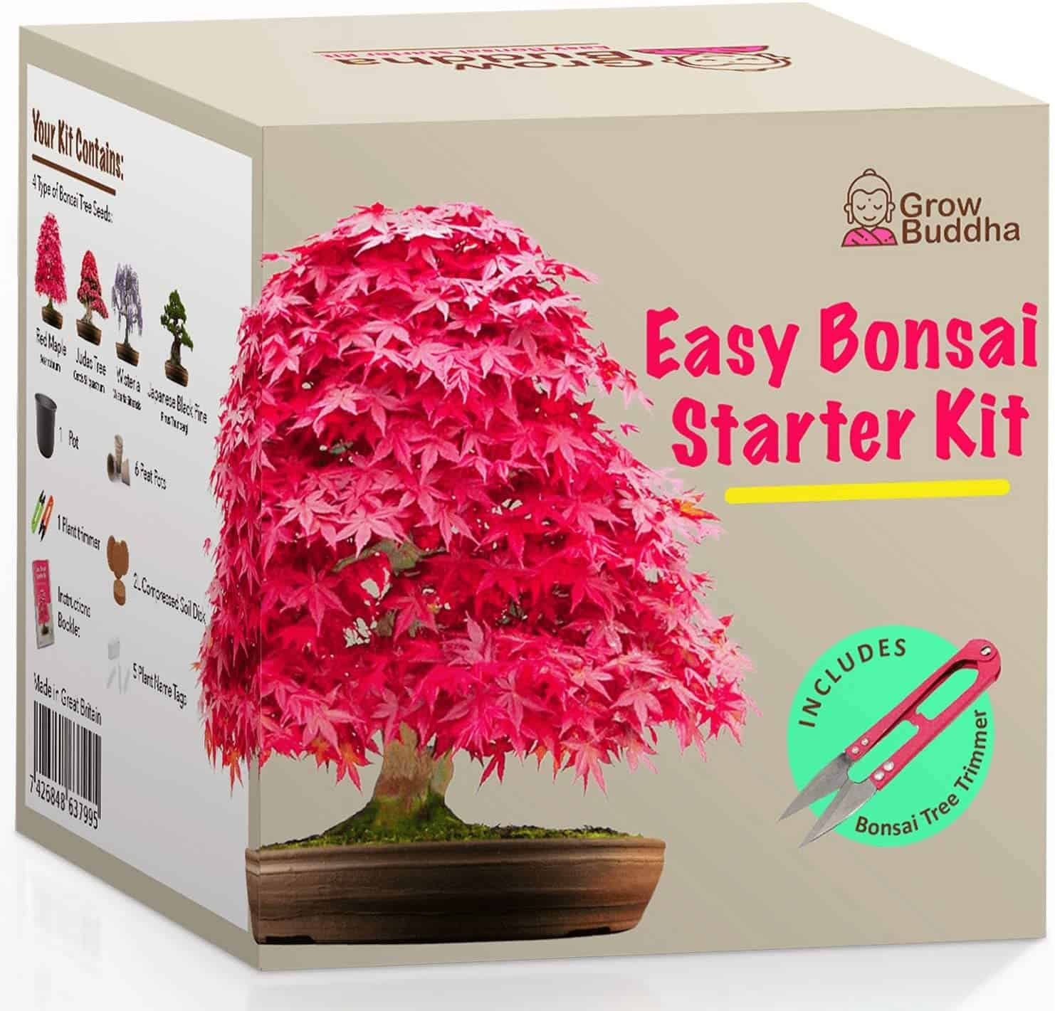 One Bonsai Starter Kit in a box included a tree trimmer