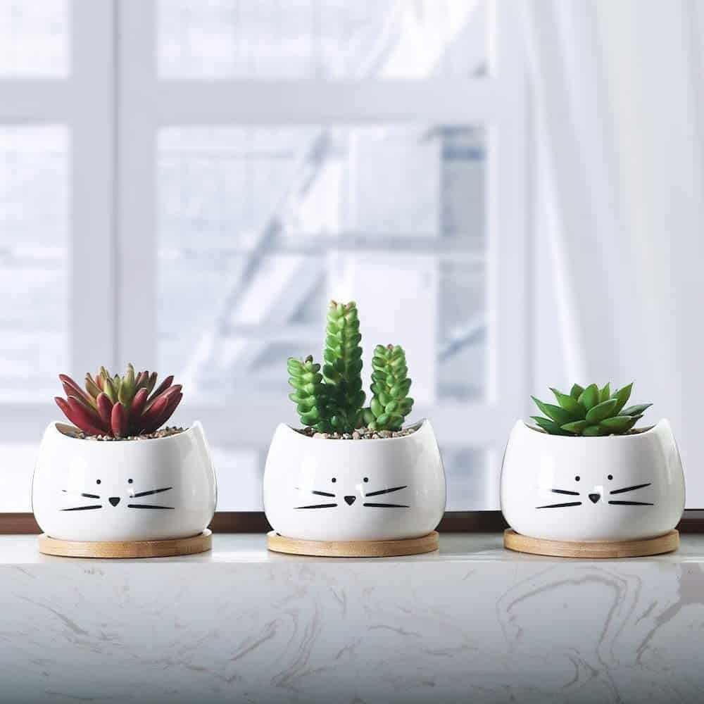 Cat Ceramic Succulent Planter Pots As A Gift For Long Distance Friendship