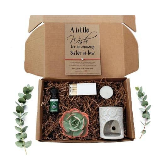 Succulent Gift Box - gifts for unbiological sister