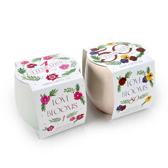 what to get the woman who has everything: anniversary flower grow kit