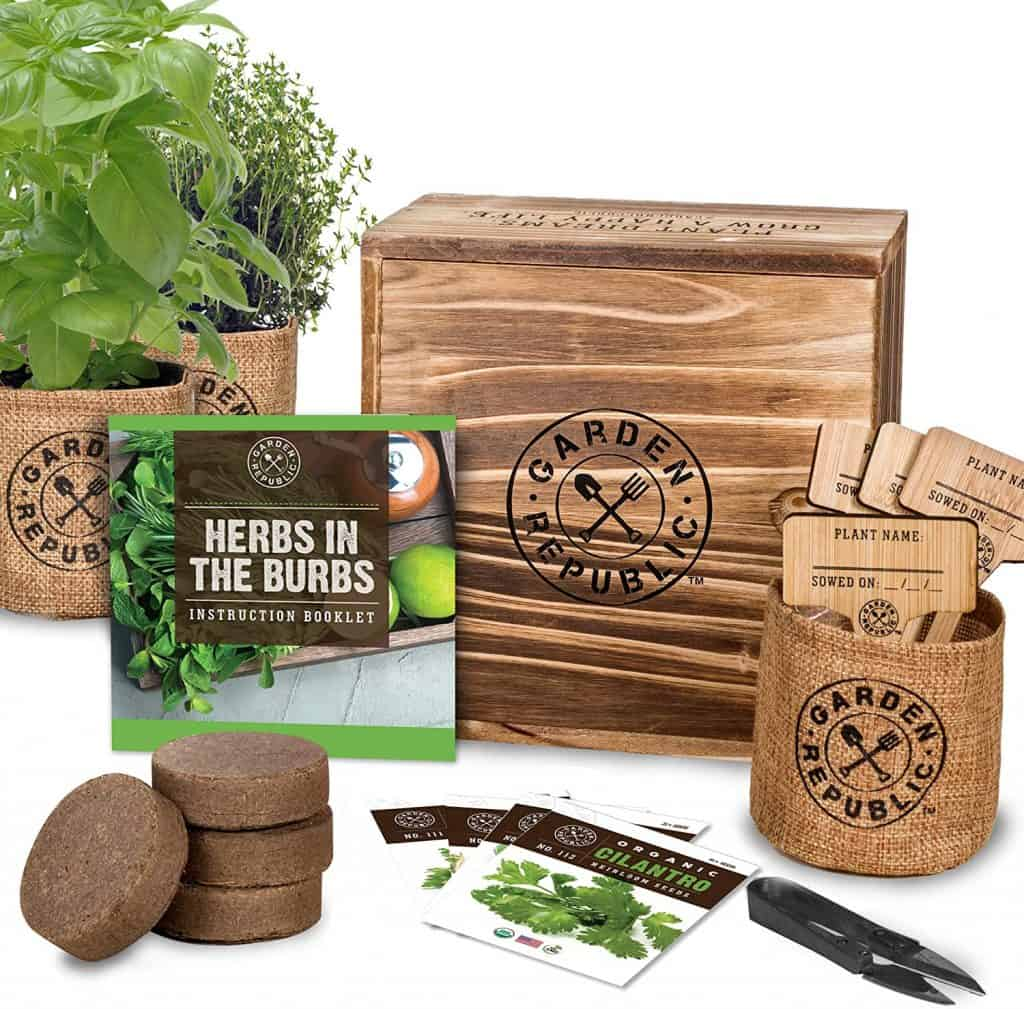 gifts for the woman who wants nothing: indoor herb starter kit