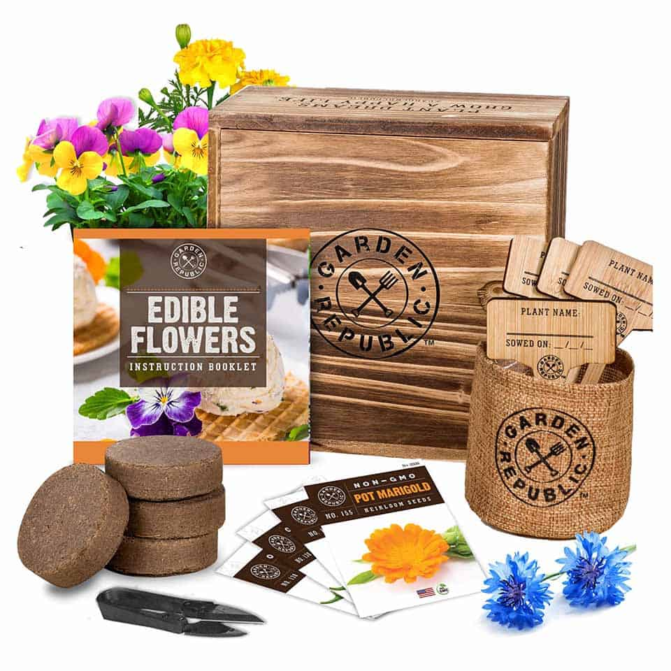 Edible Flower Seeds - mothers day gift ideas for mom from son