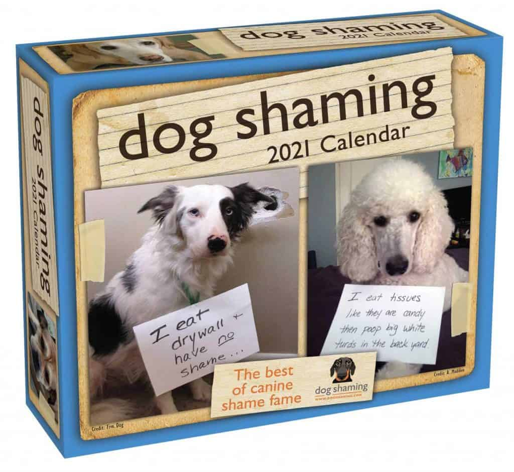 fun housewarming gift ideas: dog shaming gift ideas