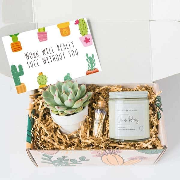gift ideas for someone leaving a job: Work Would Succ Without You Box